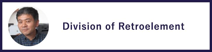 Division of Retroelement