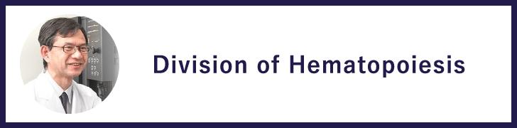Division of Hematopoiesis