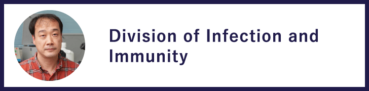 Division of Infection and Immunity